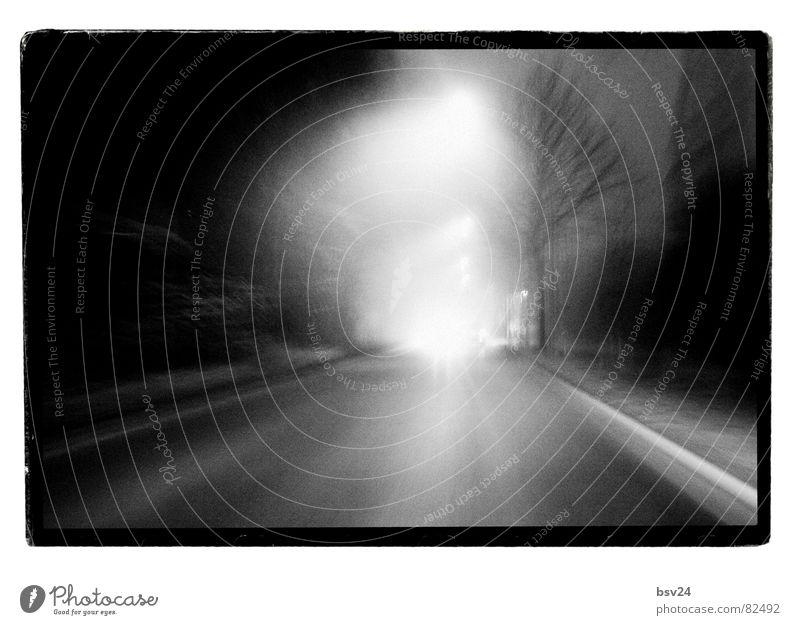 Speedway Geschwindigkeit schwarz Laterne Licht Nebel trüb Morgen Beschleunigung gerade Straßenbelag Straßenverkehr fahren Asphalt Schwarzweißfoto transit trist
