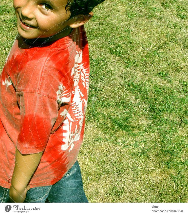 Unsinn im Sinn Kind grün Sommer Freude Leben Junge Wiese Gras lachen T-Shirt Ohr Sportrasen Lebensfreude Hemd grinsen genießen