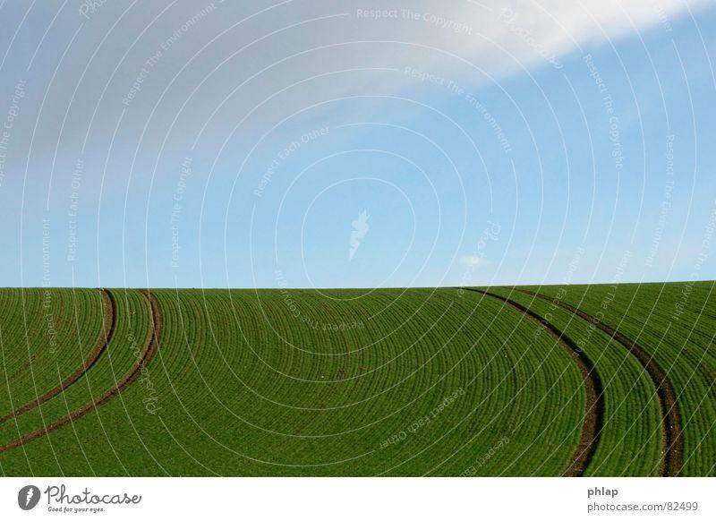 Ackerkurve Feld Landwirtschaft Wege & Pfade grün zyan Frühling horizontal Horizont ruhig Ferne Unendlichkeit Biegung Ackerbau Landschaft Kurve Himmel blau