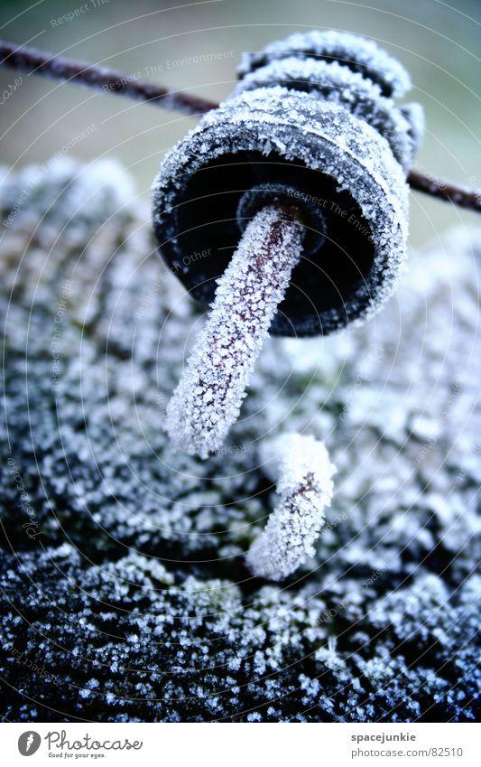 Eiskalt Holzpfahl Draht Weidezaun Raureif Wiese frisch Viehweide Grünfläche Winter Ringisolator Kristallstrukturen Frost frostgefühl kältegefühl Leitung Schnee