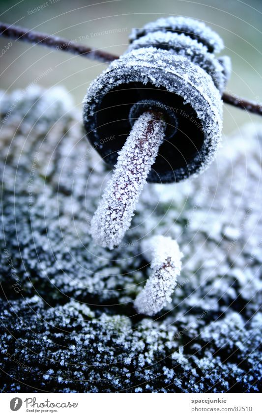 Eiskalt Winter Wiese kalt Schnee Holz Eis frisch Frost Weide Draht Leitung Kristallstrukturen Raureif Holzpfahl Viehweide Installationen