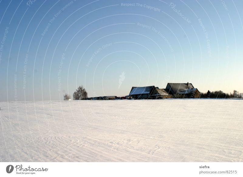 LPG im Schnee Himmel blau Winter Haus Einsamkeit Ferne kalt Schnee Eis Horizont trist Sehnsucht Landwirtschaft Sachsen abgelegen