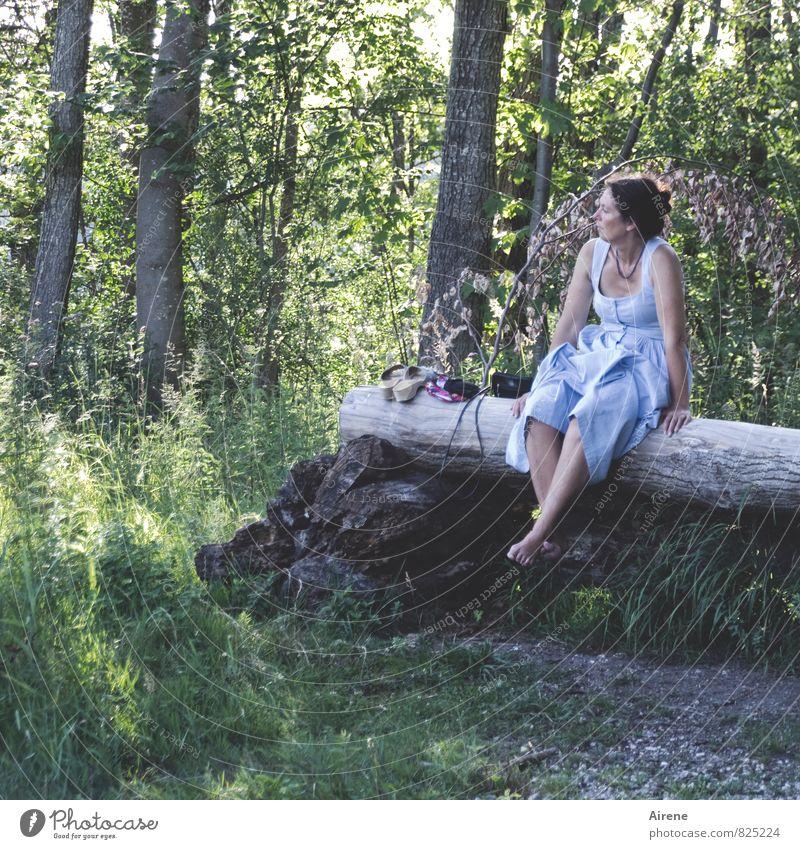 noch ein wenig innehalten Mensch Frau Ferien & Urlaub & Reisen blau grün Sommer Baum Erholung ruhig Landschaft Wald Erwachsene feminin grau Holz nachdenklich