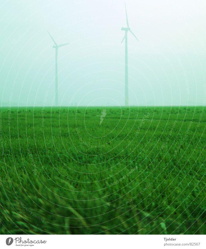 Grüner Strom Himmel grün blau Winter kalt Wiese grau Feld Nebel Energiewirtschaft Elektrizität Technik & Technologie Windkraftanlage schlechtes Wetter