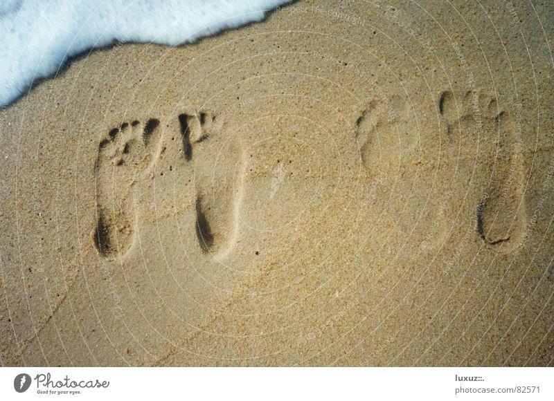Ein Augenblick lang Glück Zusammensein Strand Vergänglichkeit Zehen 2 klein groß Schaum stehen Fußspur Meer Wellen genießen Freude nass Strandspaziergang Barfuß