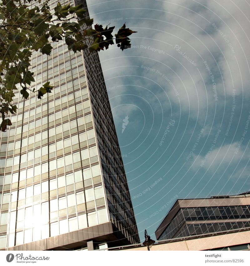 last exit utopia | 2 Himmel Natur blau Baum Pflanze Sonne Wolken Einsamkeit kalt Leben Arbeit & Erwerbstätigkeit Gebäude Lampe Beleuchtung Glas Beton