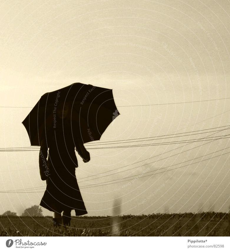 nemo Himmel ruhig Einsamkeit dunkel kalt Herbst Gras wandern gehen Regenschirm unheimlich Oberleitung Stromtransport
