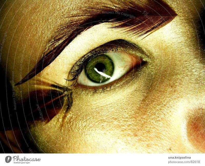 federn I Pupille Detailaufnahme staunen weich Flirten Perspektive Regenbogenhaut kulleräugig fixieren Publikum Frau Feder Auge Blick mit kulleraugen Brennpunkt