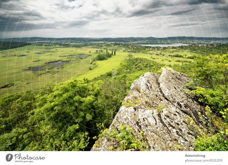 Tihany am Balaton Umwelt Natur Landschaft Pflanze Himmel Wolken Gewitterwolken Horizont Sommer Wetter Unwetter Baum Gras Sträucher Wiese Wald Hügel Felsen Moor