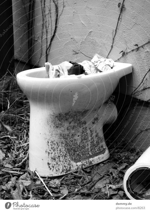 Freiluft Toilette schwarz Toilette obskur Schalen & Schüsseln