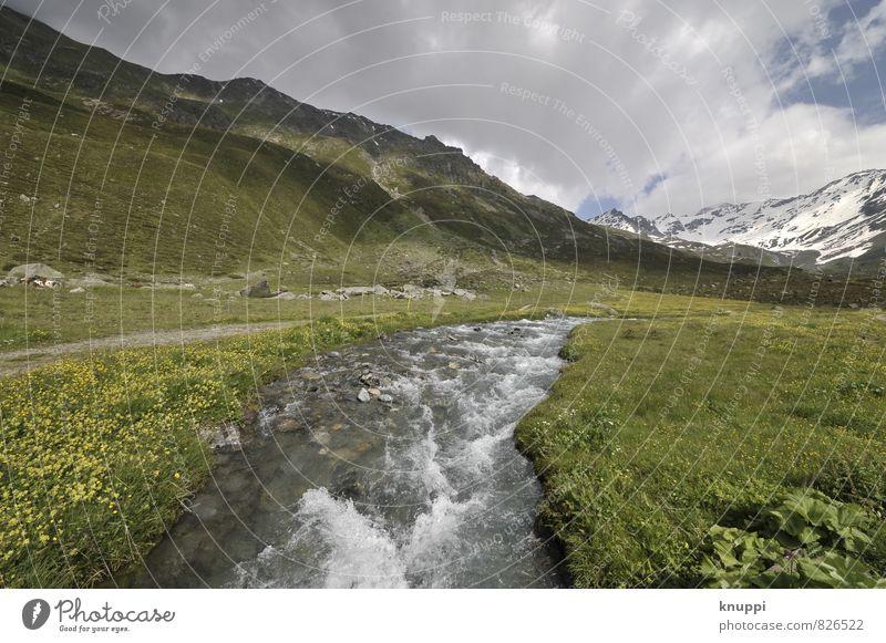 Davos Himmel Natur blau Pflanze grün Wasser Sommer Sonne Blume Landschaft Wolken Umwelt Berge u. Gebirge Schnee Gras Blüte