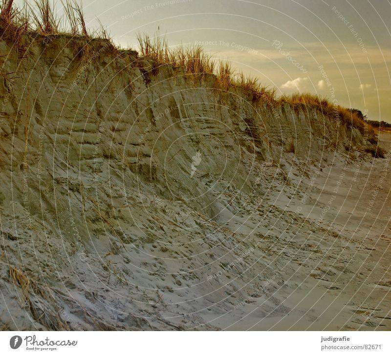Küste Natur Himmel Meer Winter Wolken kalt Gras See Landschaft Stranddüne Ostsee beige Darß Klippe Prerow