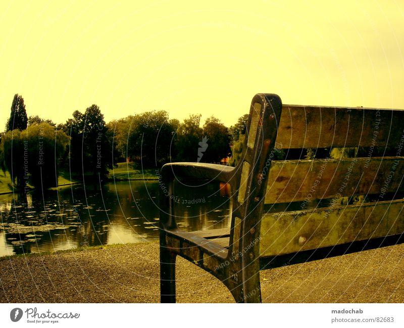 FERNWEH Himmel Natur Wasser Ferien & Urlaub & Reisen schön Baum Einsamkeit Erholung gelb Traurigkeit See Park sitzen warten groß ästhetisch