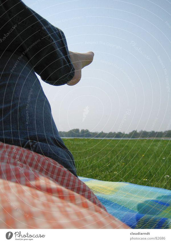 Es ist Sommer... See Wiese Horizont grün Pause Freizeit & Hobby Nachmittag Picknick träumen Ferien & Urlaub & Reisen Erholung liegen Mittag Gras Mittagspause