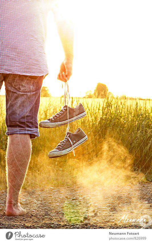 Look into Sunset Mensch Jugendliche 18-30 Jahre Junger Mann Erwachsene maskulin Feld Coolness Jeanshose Hemd