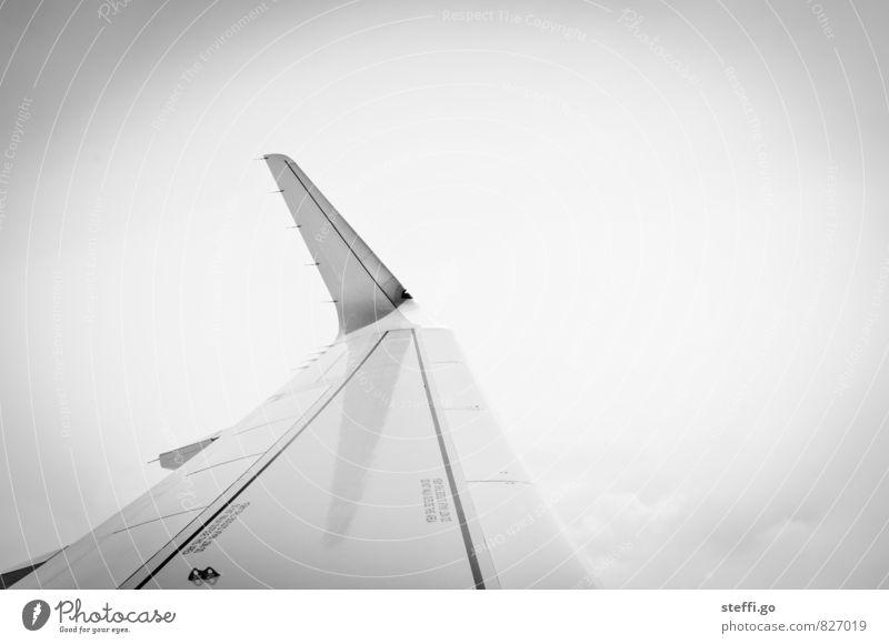 weit weg Ferien & Urlaub & Reisen Abenteuer Ferne Freiheit Wolken Horizont Luftverkehr Flugzeug Passagierflugzeug Flugzeugausblick fliegen Unendlichkeit hoch