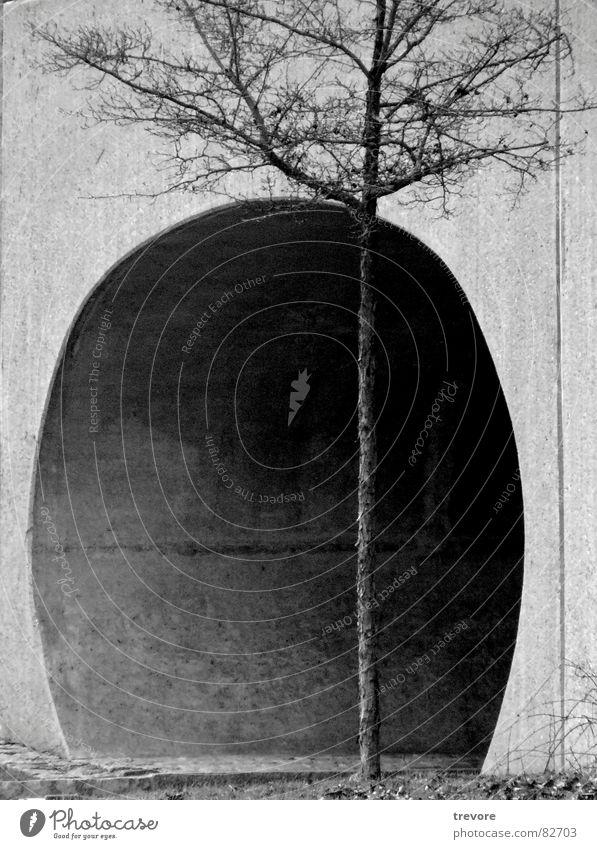 Tunnel immer hartnäckig dunkel Baum Einsamkeit wandern Fußgängerunterführung trist Bürgersteig kalt gestellt Wege & Pfade Schwarzweißfoto tree path Unterführung