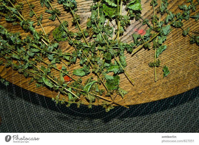 Melissa officinalis, angeblitzt Gesunde Ernährung Blatt Gesundheit Tisch Kräuter & Gewürze trocken Stengel Medikament Ernte Tee Botanik Teepflanze
