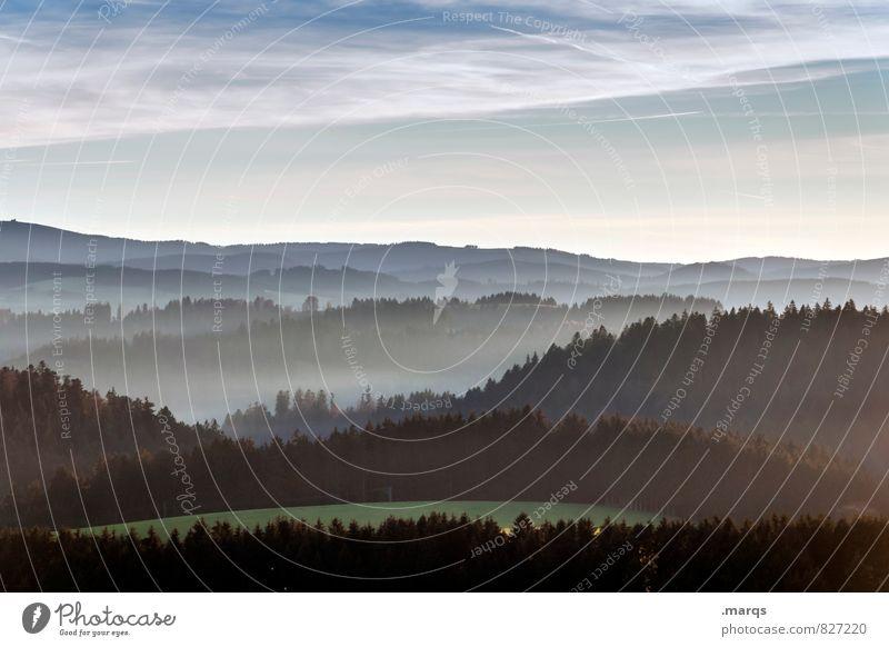 Guten Morgen Schwarzwald Tourismus Ausflug Umwelt Natur Landschaft Urelemente Himmel Horizont Frühling Sommer Klima Schönes Wetter Nebel Wald Hügel