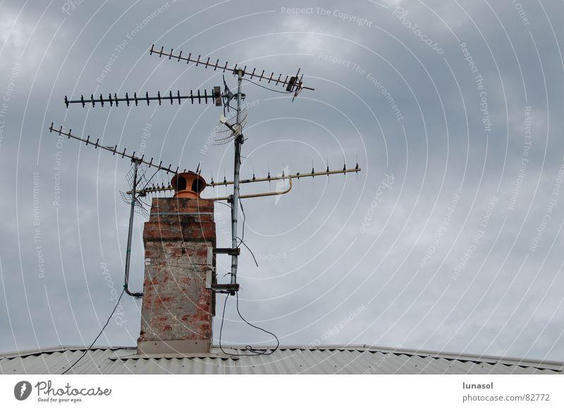 antena Sydney Fernsehen Detailaufnahme roof overcast communicate reception grey antenna