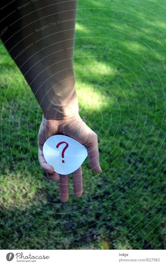 noch Fragen? Mensch grün Hand Erwachsene Leben Gras Garten Park Freizeit & Hobby Lifestyle Arme Schriftzeichen Kreis Kommunizieren Papier Neugier