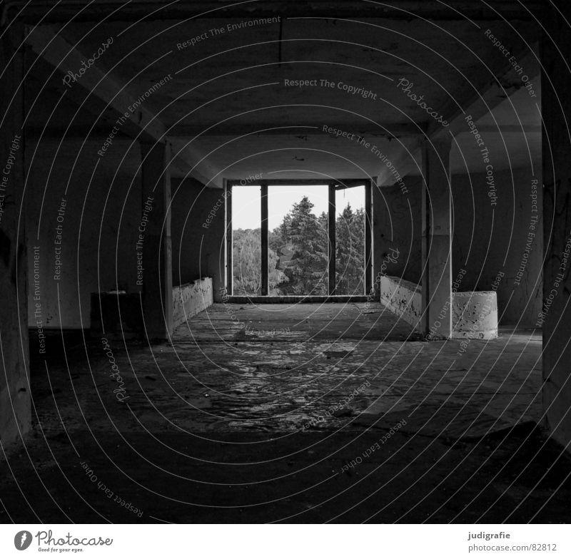 Durch innen nach außen Haus schwarz Wand Fenster Gebäude Graffiti Raum Platz Baustelle Vergänglichkeit Hotel verfallen Umzug (Wohnungswechsel) Verfall Bauwerk