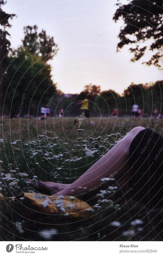 Sommer Wiese Park Blume Freizeit & Hobby Beine Fußball unkronkret