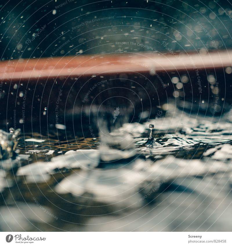 Regnerische Tage #2 Natur Wasser Umwelt Wetter Regen nass spritzen Pfütze Frustration schlechtes Wetter