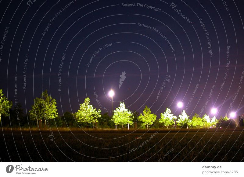 Nachtimpressionen dunkel Baum Laterne Licht grün violett Langzeitbelichtung Stern (Symbol) Straße