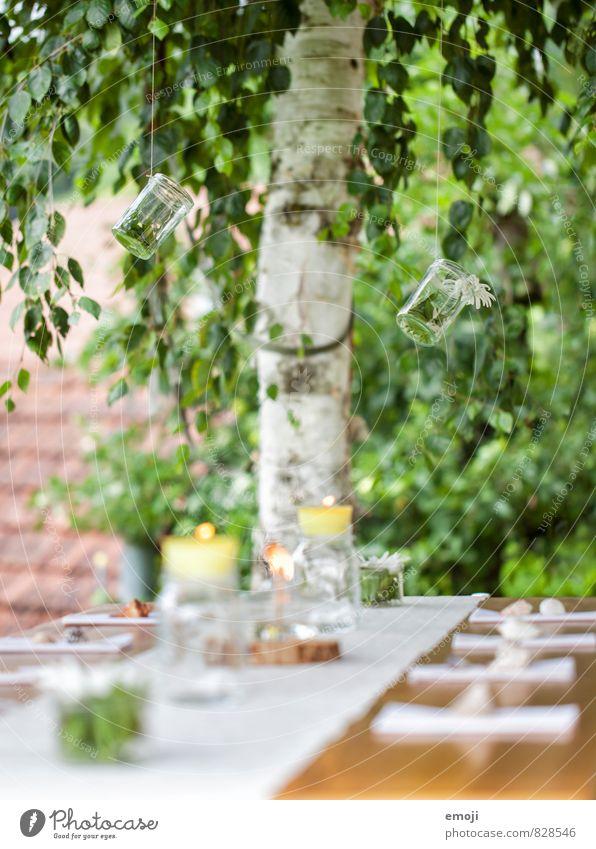 summer garden party Natur grün Umwelt natürlich Feste & Feiern Dekoration & Verzierung Ernährung Schönes Wetter Geschirr selbstgemacht Tischdekoration