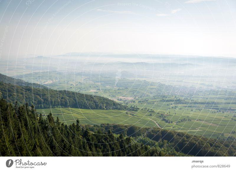 Rheintal Tourismus Ausflug Umwelt Natur Landschaft Wolkenloser Himmel Horizont Sommer Schönes Wetter Baum Wiese Wald Hügel Ebene Aussicht Stimmung Erfolg