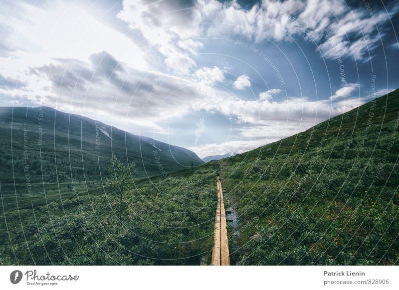 immer gerade aus Himmel Natur Ferien & Urlaub & Reisen Pflanze Einsamkeit Landschaft Wolken Ferne Umwelt Berge u. Gebirge Leben Wege & Pfade Freiheit Stimmung