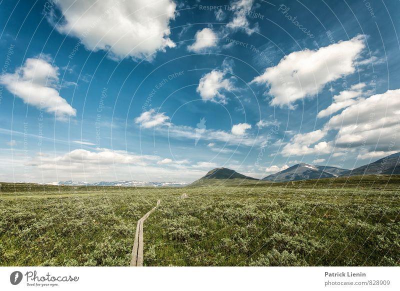 until we meet the sky Himmel Natur Ferien & Urlaub & Reisen Pflanze Baum Erholung Landschaft Wolken Berge u. Gebirge Umwelt Wege & Pfade Zufriedenheit Wetter