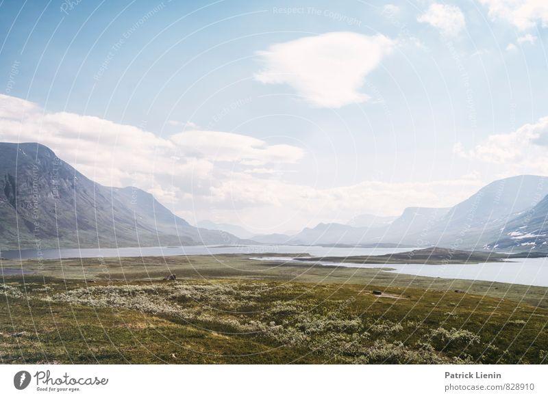 Nordschweden Himmel Natur Ferien & Urlaub & Reisen Pflanze Sommer Erholung Wolken ruhig Ferne Berge u. Gebirge Umwelt Wiese Freiheit Stimmung Zufriedenheit