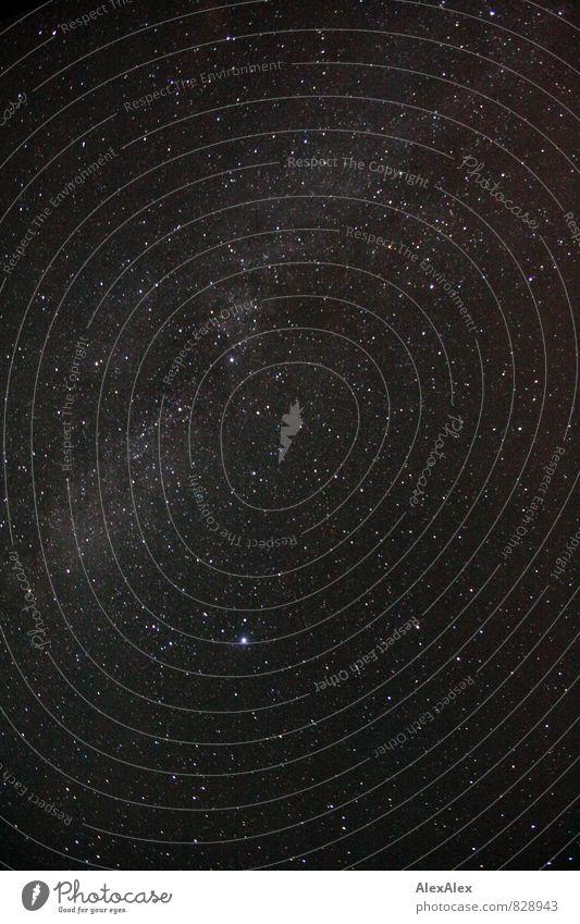 Wo die großen Sternen wohnen! Himmel Natur weiß Ferne schwarz Stimmung Horizont leuchten ästhetisch Ewigkeit Weltall Sternenhimmel Galaxie Nacht
