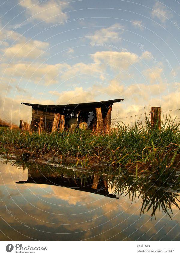 Teehäuschen Wasser schön Baum Sonne grün ruhig Wolken Erholung Herbst Wiese Gras Glück Wege & Pfade Zufriedenheit 2 Wohnung