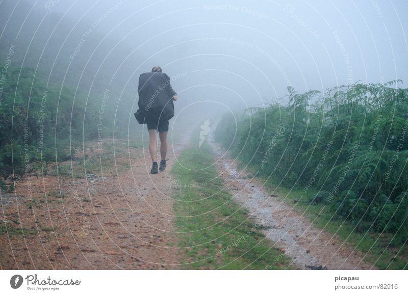 Wanderer im Nebel Einsamkeit Herbst grau wandern Brasilien Rucksack Südamerika planlos Nebelschleier Nebelbank