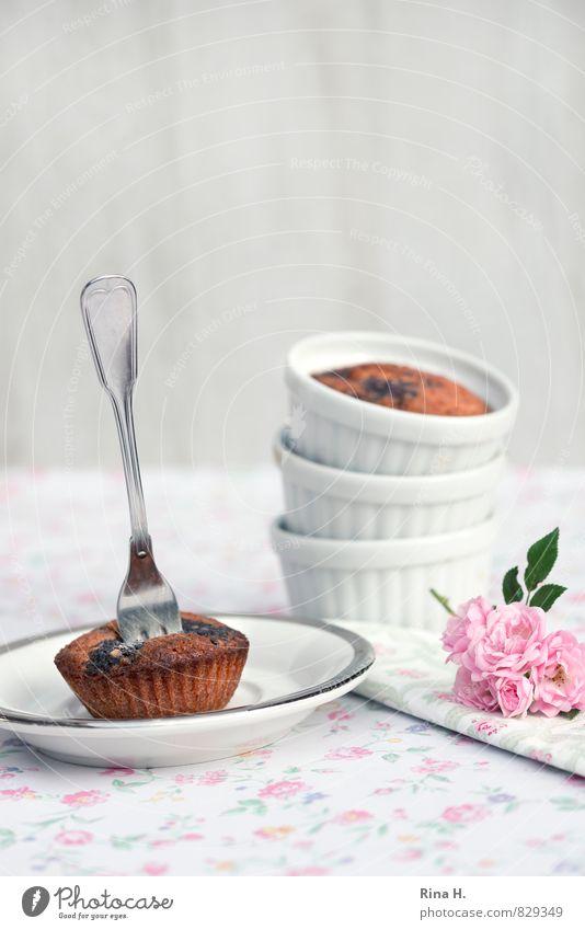 KirschMohn II weiß hell rosa süß Rose lecker Geschirr Teller Backwaren Teigwaren Tischwäsche Gabel Muffin Serviette