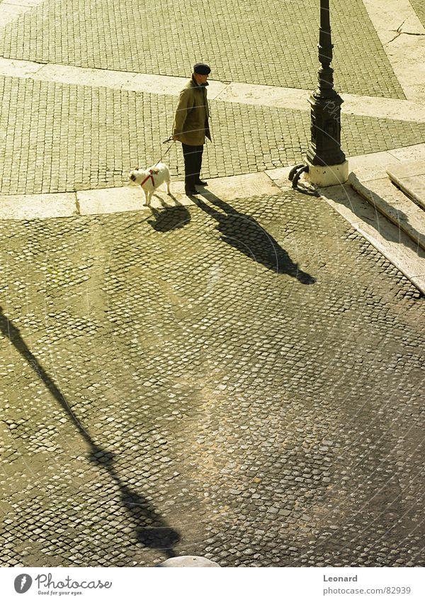 Mann mit Hund Tier Sonnenaufgang Stadt Licht man Mensch Silhouette Lichtschein folk pet animal glänzend lantern blockhead cobblestone sunshine sunrise street