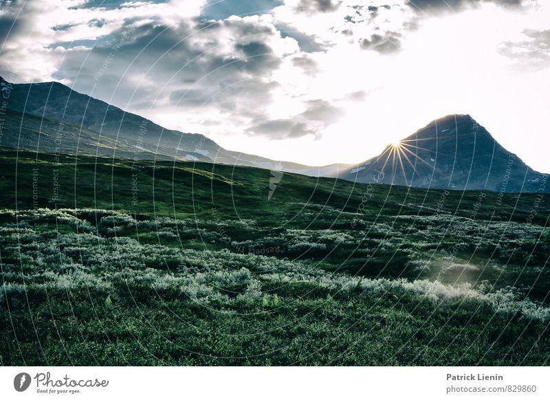 Into the Wild Natur Pflanze Sonne Erholung Landschaft ruhig Ferne Berge u. Gebirge Umwelt Freiheit Zufriedenheit Wetter wandern Kraft Sträucher Ausflug