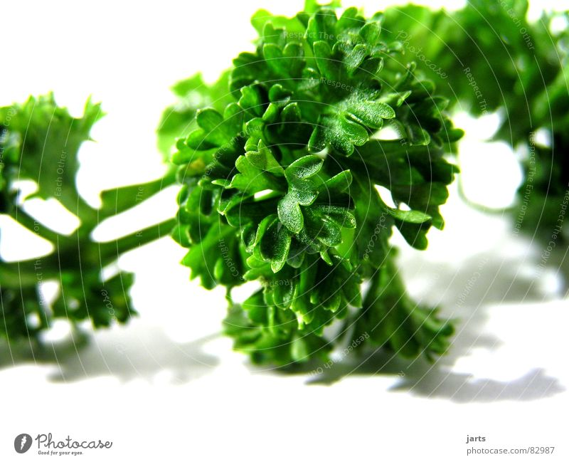 Petersilie I grün Garten Kochen & Garen & Backen Küche Dekoration & Verzierung Gastronomie Kräuter & Gewürze Gemüse Geschmackssinn Vegetarische Ernährung