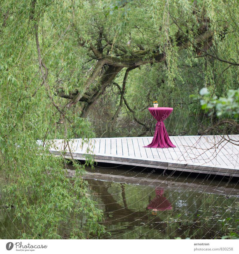 Stehpicknick - IGS 2013 grün Wasser Baum Erholung rot Landschaft ruhig Holz Essen Schwimmen & Baden Feste & Feiern außergewöhnlich Park Tisch Hamburg Seeufer