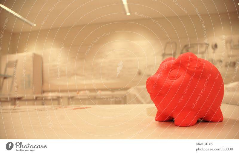 Schwein gehabt! rosa Innenaufnahme Licht Sau Freundlichkeit Freude Glück jahreswende