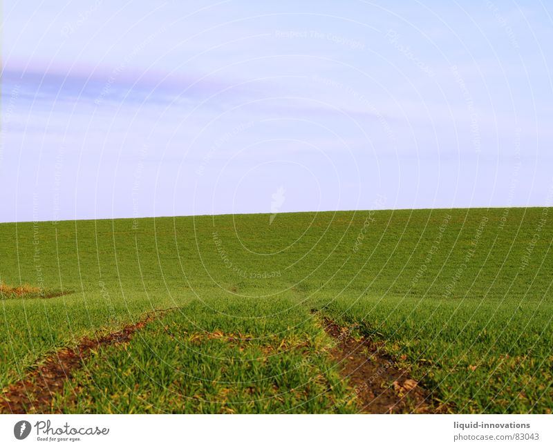 Spur Himmel grün blau ruhig Ferne Wiese Frühling Wege & Pfade Landschaft Feld Wellen Horizont Spuren Unendlichkeit Hügel Landwirtschaft