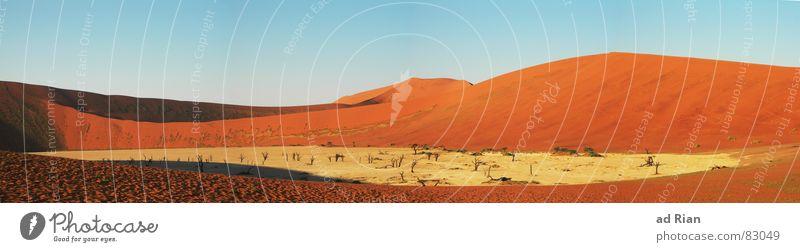 deadvlei rot Ferne gelb Wärme Sand braun Afrika Wüste heiß Hügel beige Blauer Himmel Dürre Ödland Namibia Textfreiraum