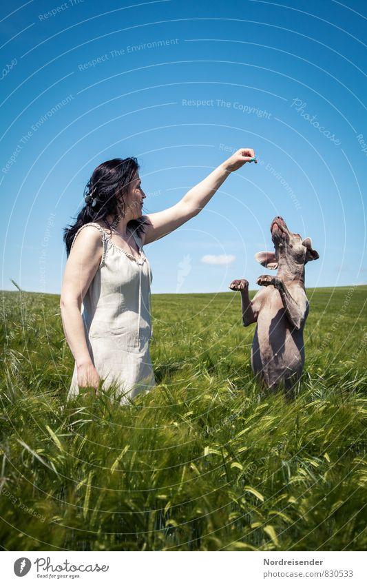 Dafür kann ich Alles..... Hund Mensch Frau Natur Sommer Erholung Landschaft Freude Tier Erwachsene feminin Spielen Feld Lifestyle Fröhlichkeit Schönes Wetter