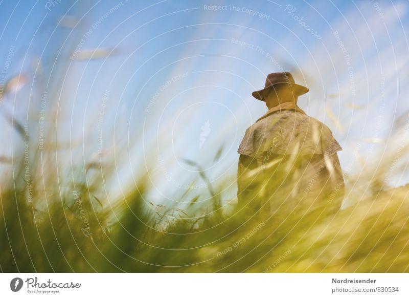 Vogelscheuche Mensch Natur Mann Pflanze Sommer Einsamkeit Erholung Landschaft Erwachsene Leben Wiese Freiheit träumen maskulin Feld stehen