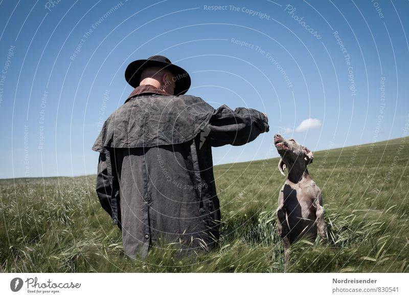 Der Scheuch und sein Hund Mensch Himmel Natur Mann Sommer Landschaft Tier Erwachsene Wege & Pfade Spielen springen Freundschaft Freizeit & Hobby maskulin Feld