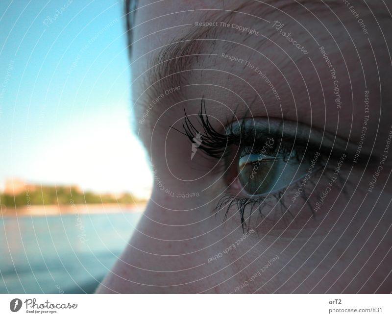 Rhein Eye Frau Nahaufnahme Auge Seite Gesichtsausdruck