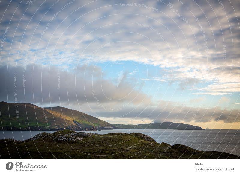 Ring of Beara Himmel Natur Ferien & Urlaub & Reisen blau schön grün Wasser Sommer Meer Einsamkeit Landschaft Tier Ferne Berge u. Gebirge Küste Freiheit